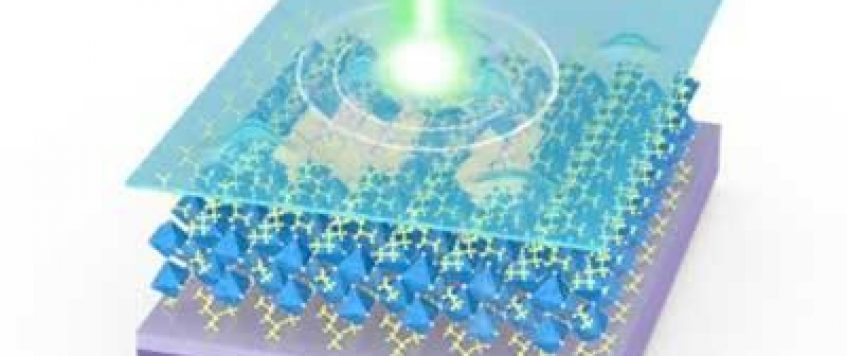 NUS team harnesses the properties of 2D perovskites for ultrathin optoelectronic applications