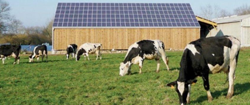 Energies renouvelables: le Maroc connaît une dynamique soutenue.